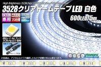3528テープLED 120LED/m クリアドーム 白色 5m