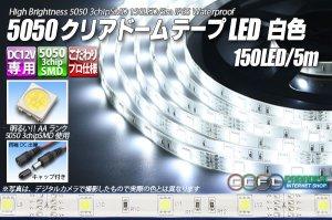 画像1: 5050テープLED 30LED/m クリアドーム 白色 5m